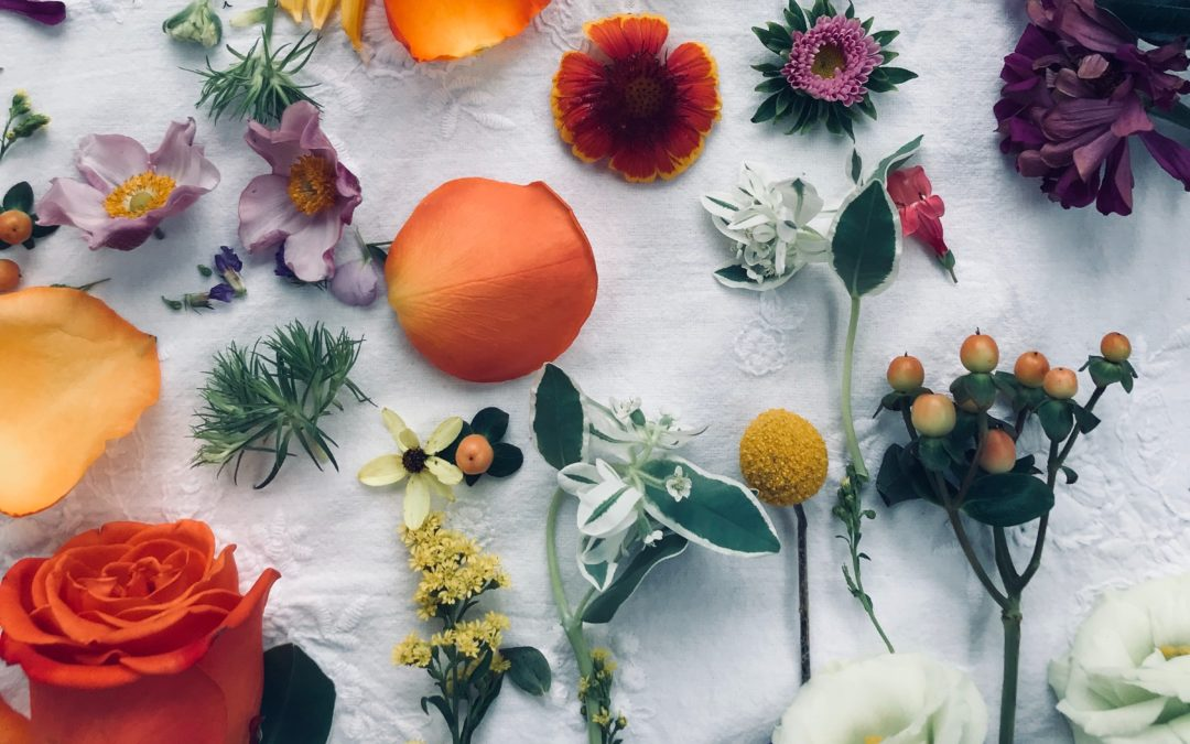 Konventionelle Kosmetik vs. Natur-und Biokosmetik